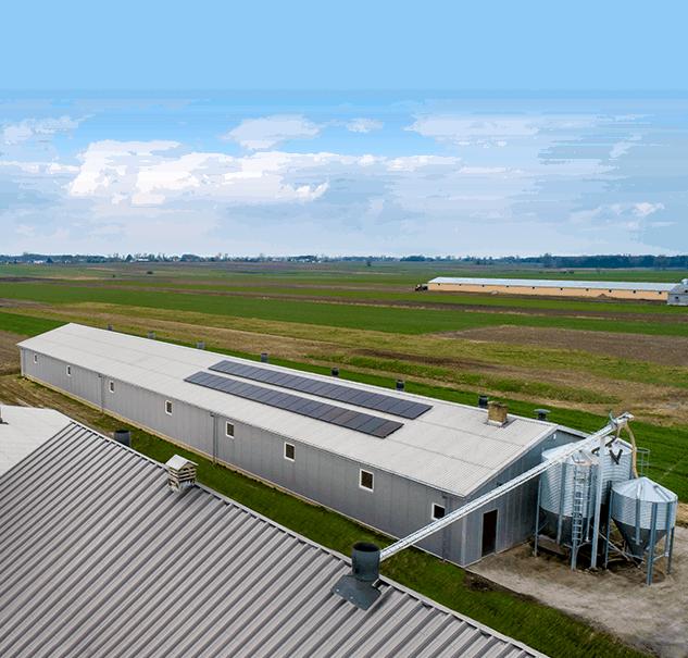 Oferta Columbus Energy dla rolnika