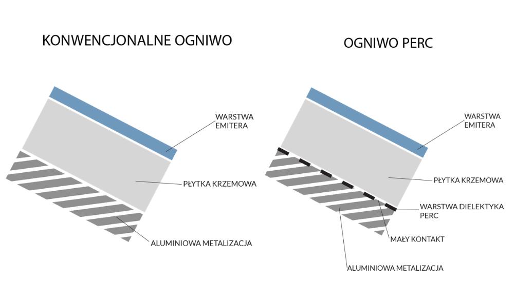 moduły perc